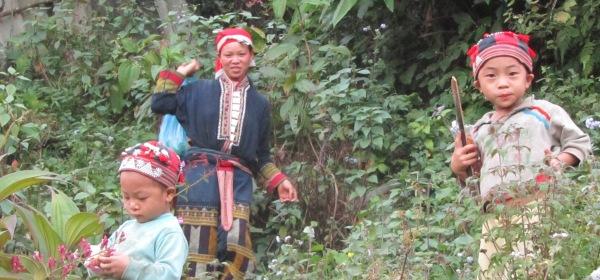 Crveni Dzao, Sapa, Vijetnam