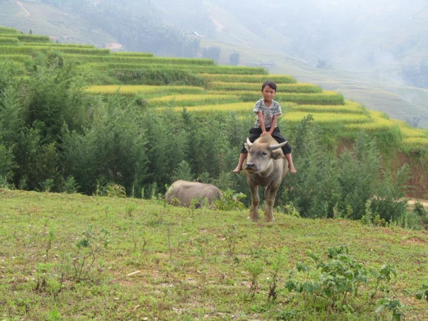 Sapa, Vijetnam